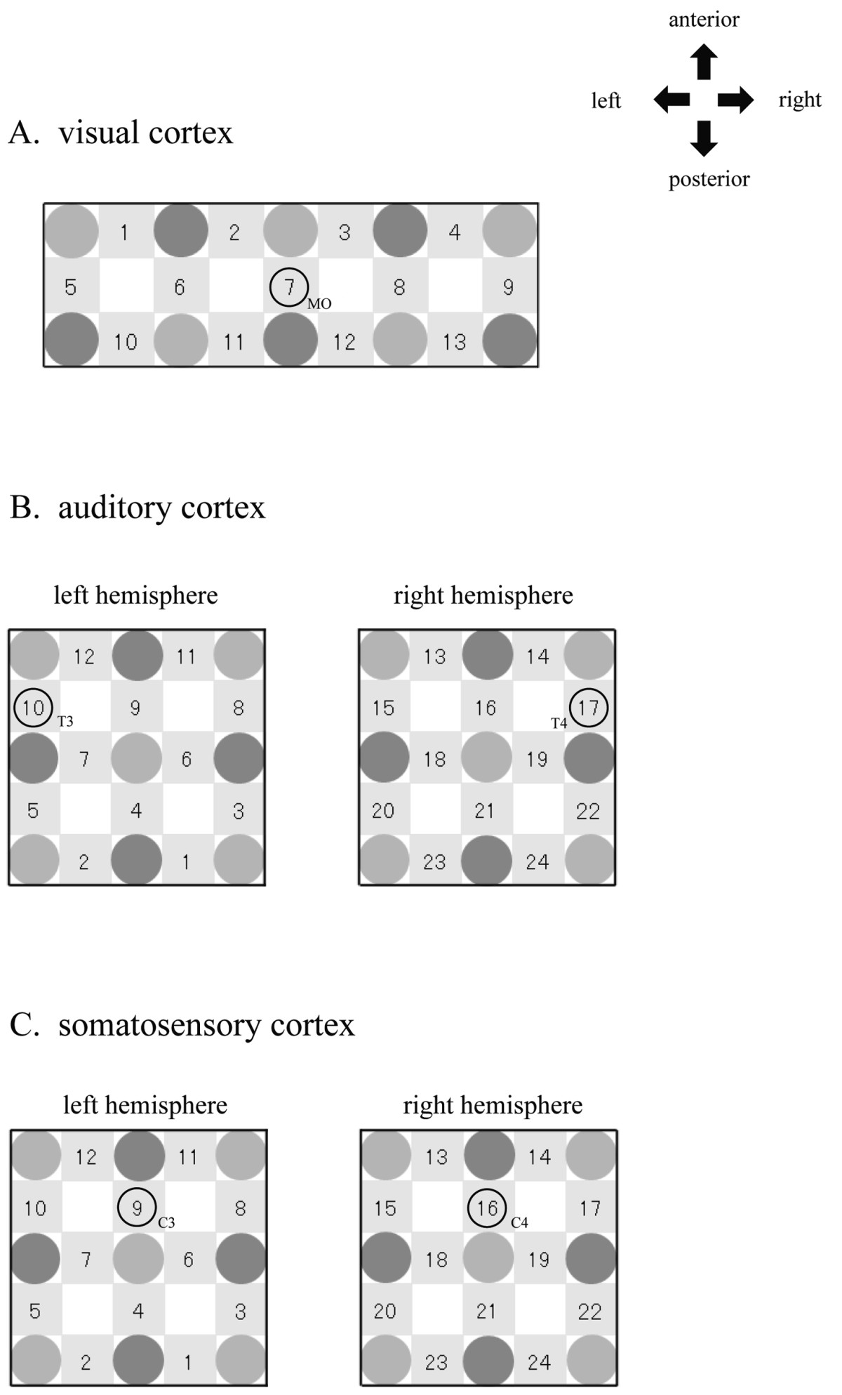 http://static-content.springer.com/image/art%3A10.1186%2F1880-6805-31-31/MediaObjects/40101_2012_Article_29_Fig2_HTML.jpg
