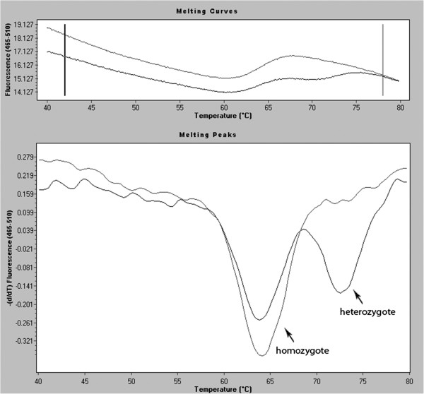 http://static-content.springer.com/image/art%3A10.1186%2F1897-4287-10-17/MediaObjects/13053_2012_439_Fig7_HTML.jpg
