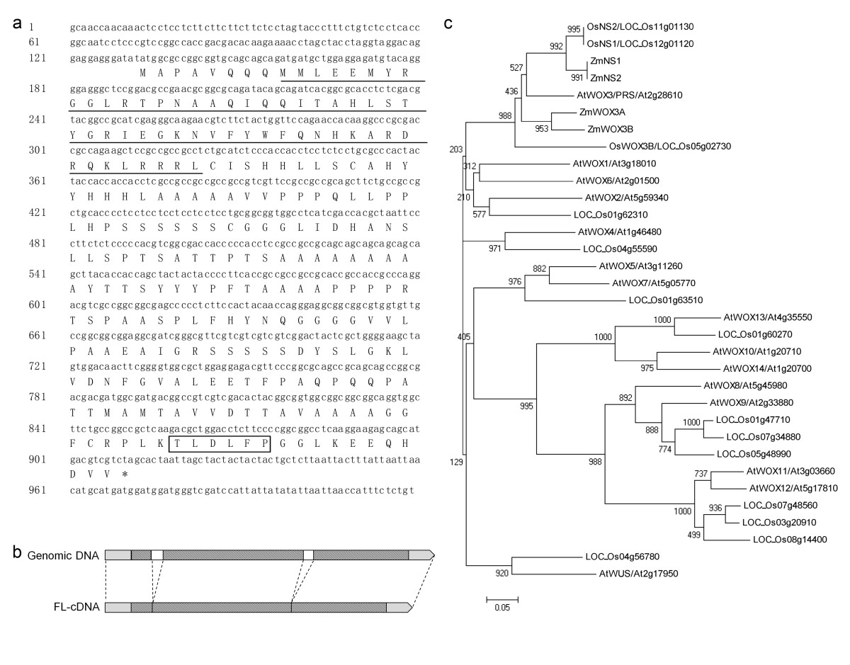 http://static-content.springer.com/image/art%3A10.1186%2F1939-8433-5-30/MediaObjects/12284_2012_Article_22_Fig5_HTML.jpg