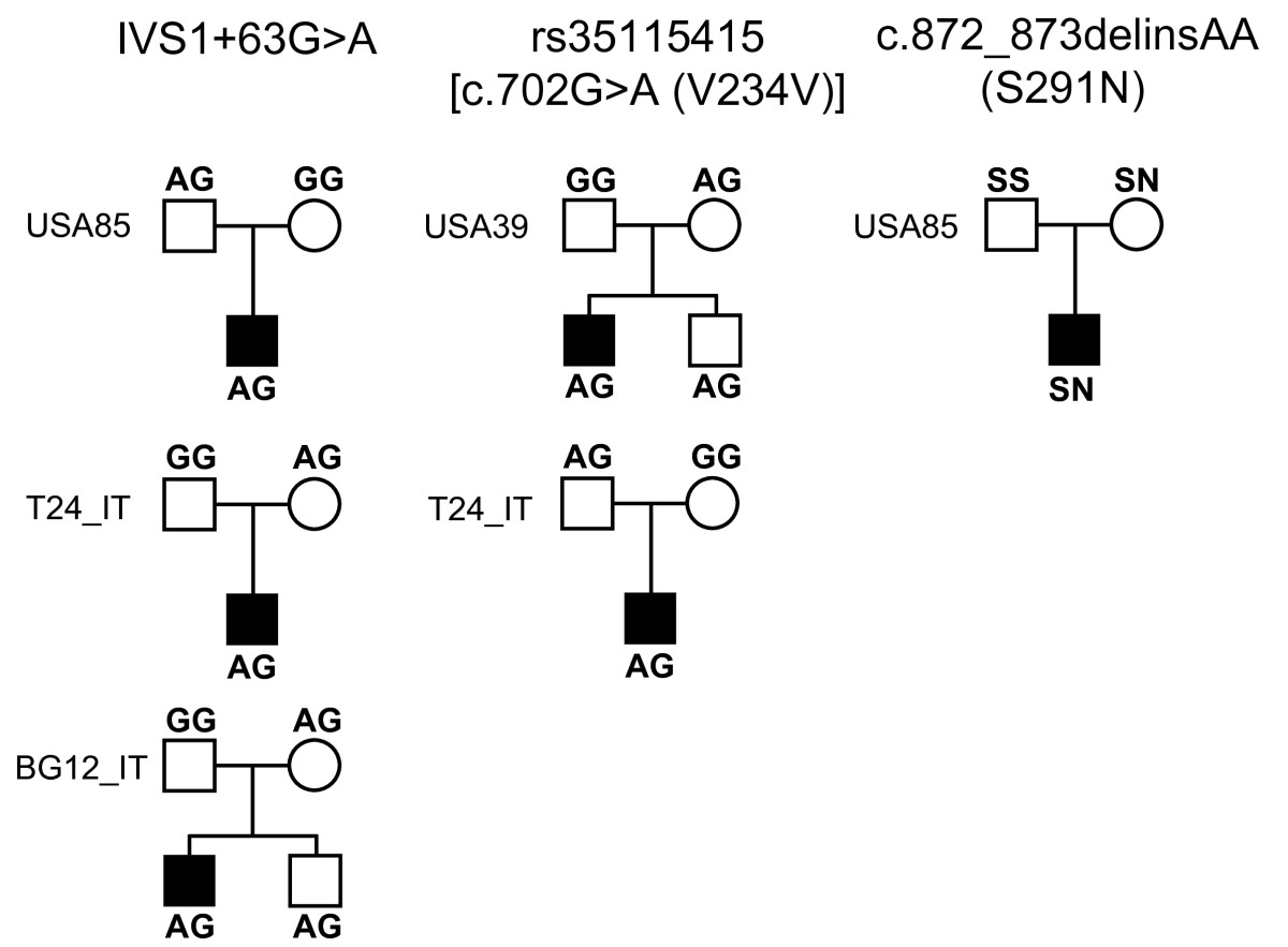 http://static-content.springer.com/image/art%3A10.1186%2F2040-2392-1-9/MediaObjects/13229_2009_Article_9_Fig1_HTML.jpg