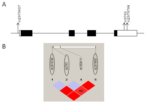 http://static-content.springer.com/image/art%3A10.1186%2F2040-2392-3-12/MediaObjects/13229_2012_Article_45_Fig2_HTML.jpg