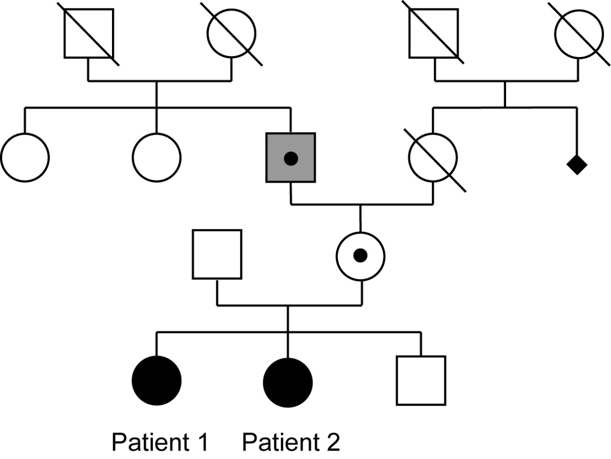 http://static-content.springer.com/image/art%3A10.1186%2F2040-2392-3-5/MediaObjects/13229_2012_Article_39_Fig1_HTML.jpg
