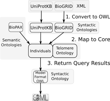http://static-content.springer.com/image/art%3A10.1186%2F2041-1480-1-S1-S3/MediaObjects/13326_2010_Article_13_Fig1_HTML.jpg