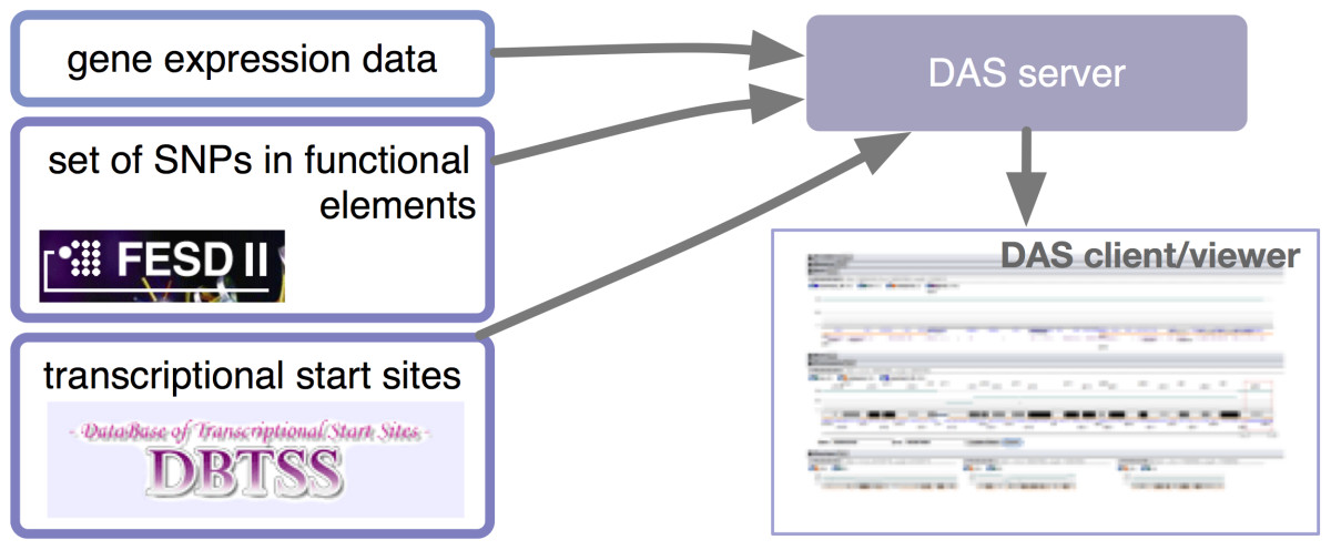 http://static-content.springer.com/image/art%3A10.1186%2F2041-1480-2-4/MediaObjects/13326_2011_Article_51_Fig3_HTML.jpg