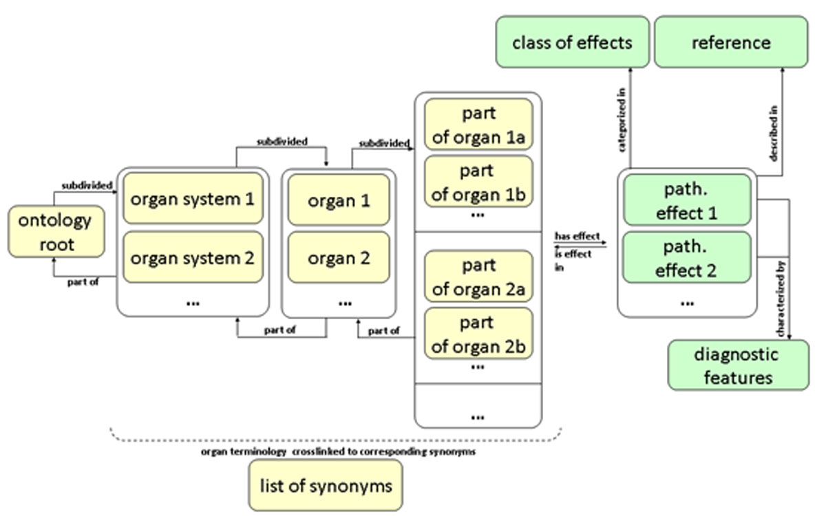 http://static-content.springer.com/image/art%3A10.1186%2F2041-1480-3-S1-S7/MediaObjects/13326_2012_Article_77_Fig3_HTML.jpg