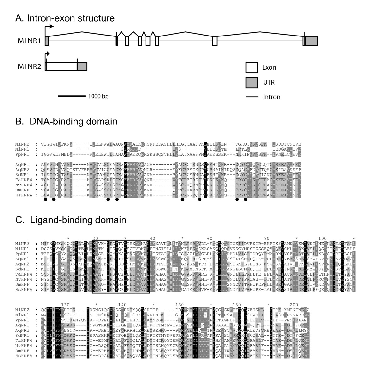 http://static-content.springer.com/image/art%3A10.1186%2F2041-9139-2-3/MediaObjects/13227_2010_Article_17_Fig1_HTML.jpg