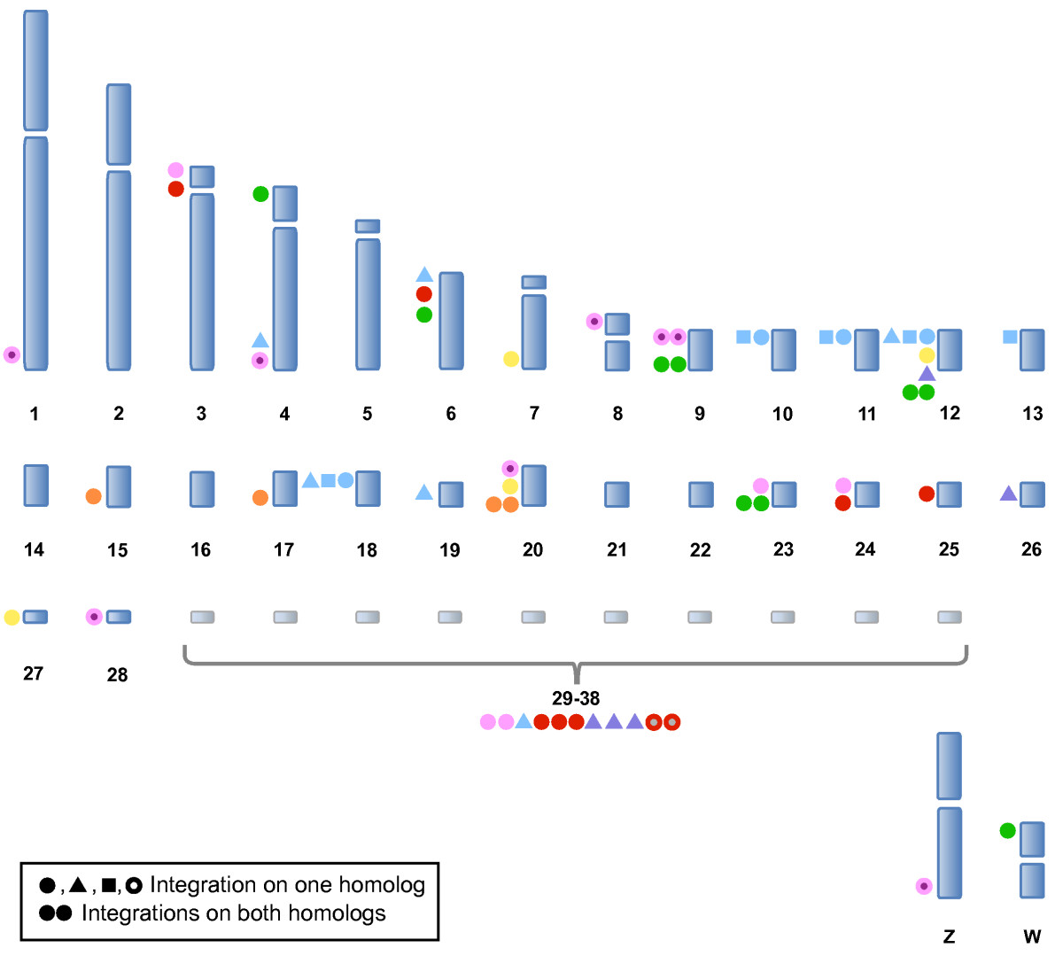 http://static-content.springer.com/image/art%3A10.1186%2F2042-4280-1-5/MediaObjects/13276_2010_Article_5_Fig5_HTML.jpg