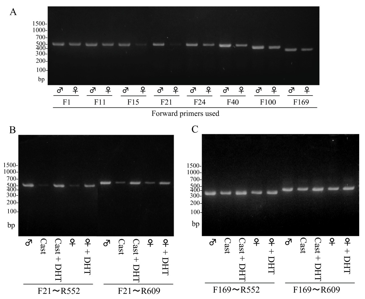 http://static-content.springer.com/image/art%3A10.1186%2F2042-6410-2-13/MediaObjects/13293_2011_Article_22_Fig2_HTML.jpg