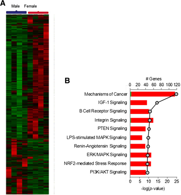 http://static-content.springer.com/image/art%3A10.1186%2F2042-6410-4-10/MediaObjects/13293_2013_Article_61_Fig1_HTML.jpg
