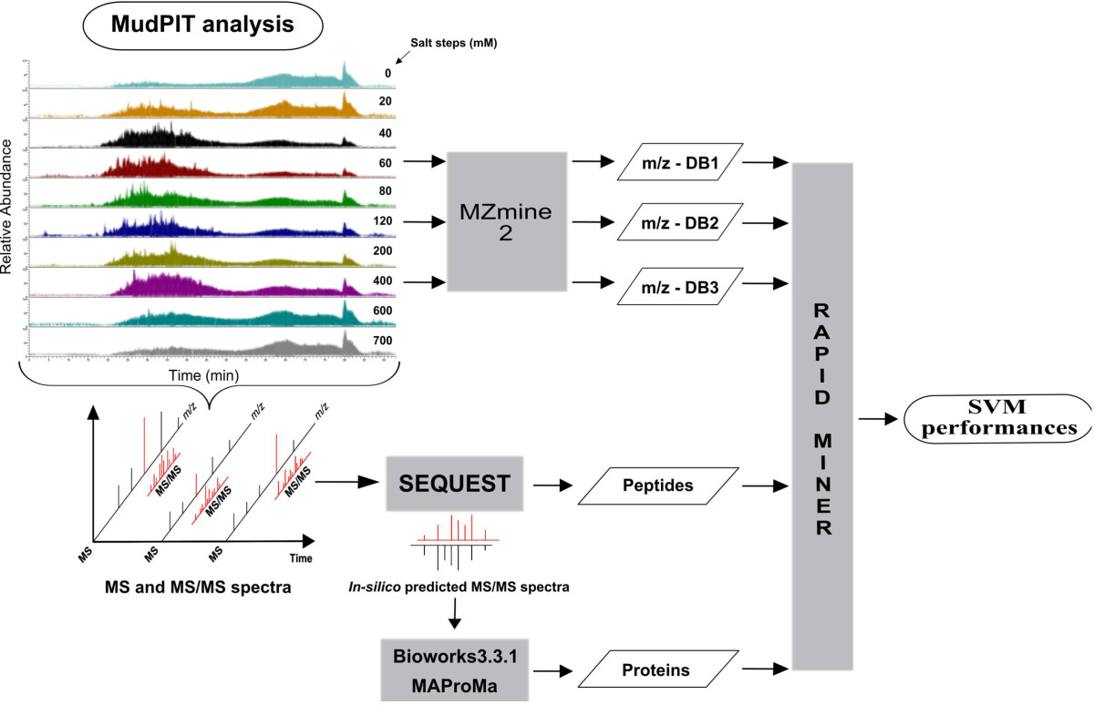 http://static-content.springer.com/image/art%3A10.1186%2F2043-9113-3-1/MediaObjects/13336_2012_Article_59_Fig1_HTML.jpg