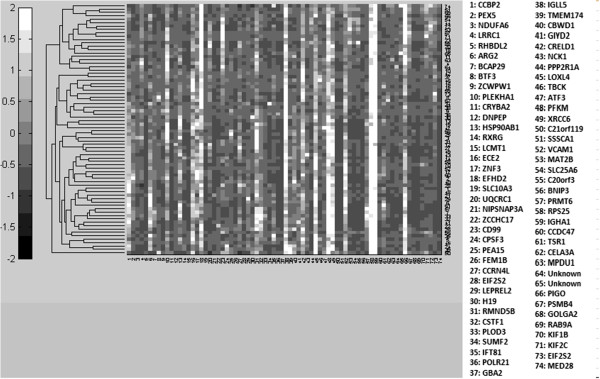 http://static-content.springer.com/image/art%3A10.1186%2F2043-9113-3-9/MediaObjects/13336_2013_Article_68_Fig10_HTML.jpg
