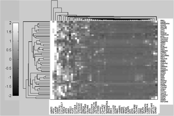 http://static-content.springer.com/image/art%3A10.1186%2F2043-9113-3-9/MediaObjects/13336_2013_Article_68_Fig11_HTML.jpg