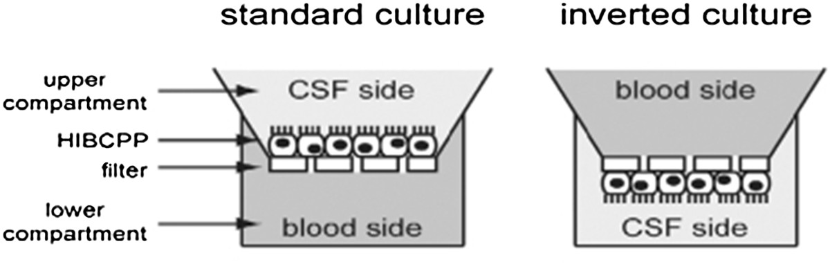 http://static-content.springer.com/image/art%3A10.1186%2F2045-8118-10-10/MediaObjects/12987_2012_Article_57_Fig2_HTML.jpg