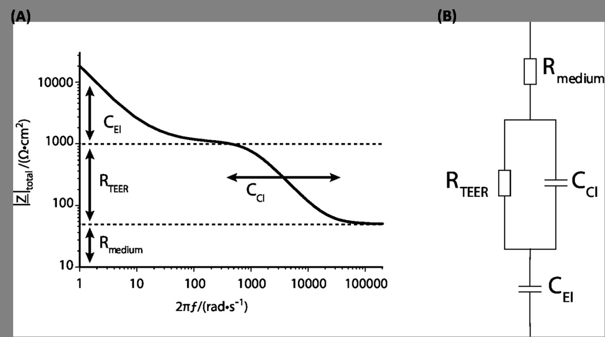 http://static-content.springer.com/image/art%3A10.1186%2F2045-8118-10-5/MediaObjects/12987_2012_Article_52_Fig4_HTML.jpg