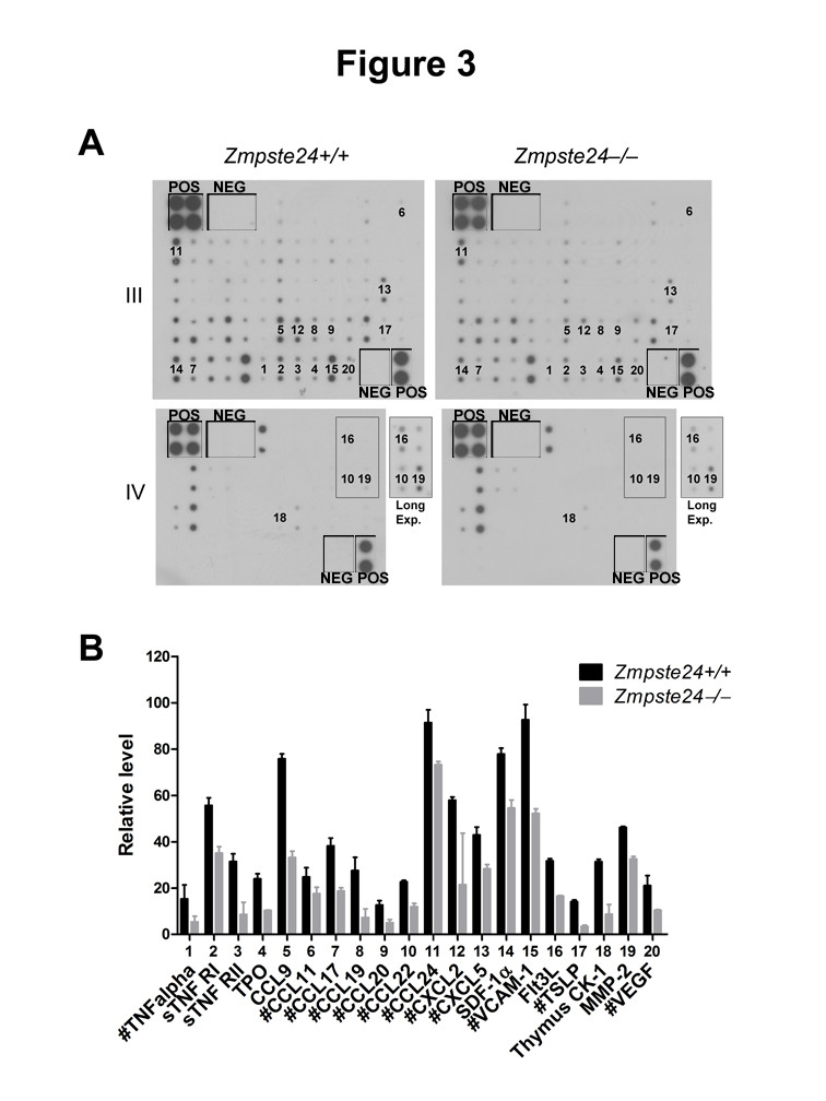 http://static-content.springer.com/image/art%3A10.1186%2F2046-2395-2-1/MediaObjects/13685_2012_Article_10_Fig3_HTML.jpg