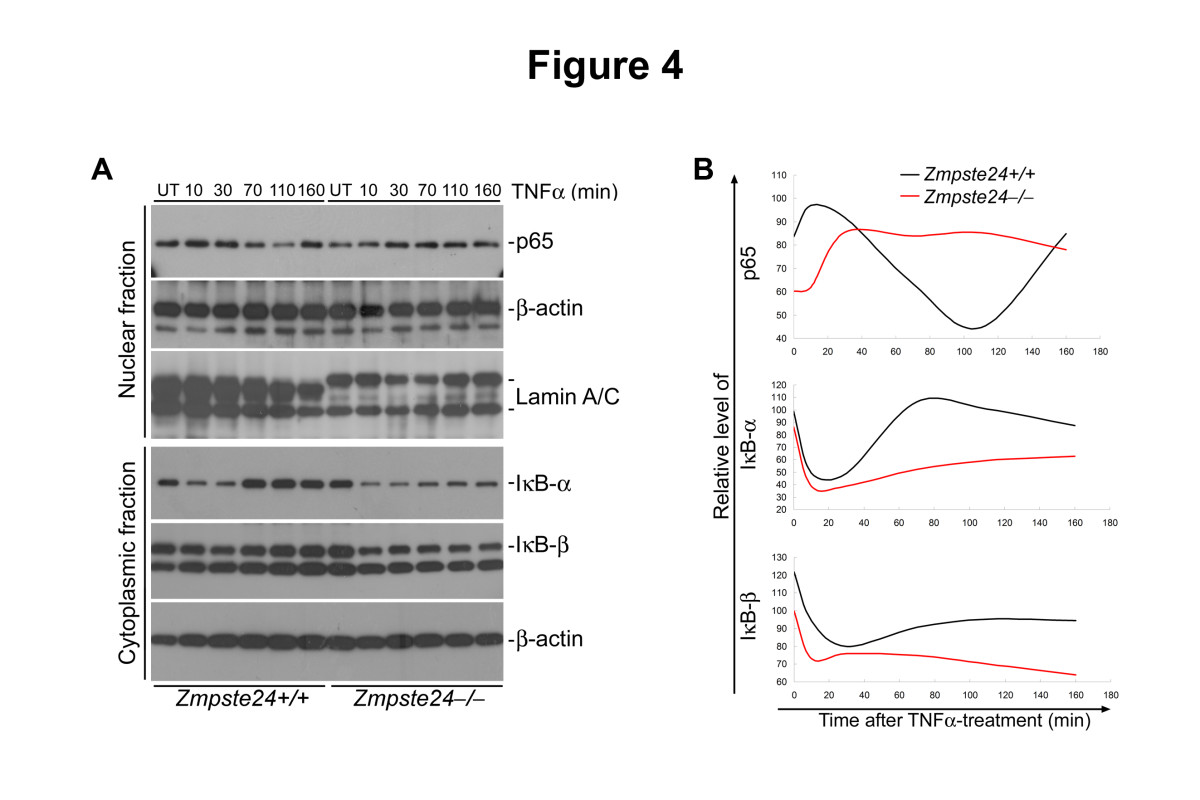 http://static-content.springer.com/image/art%3A10.1186%2F2046-2395-2-1/MediaObjects/13685_2012_Article_10_Fig4_HTML.jpg