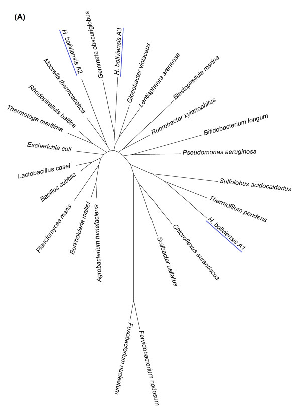 http://static-content.springer.com/image/art%3A10.1186%2F2046-9063-8-9/MediaObjects/12999_2012_9_Fig1_HTML.jpg