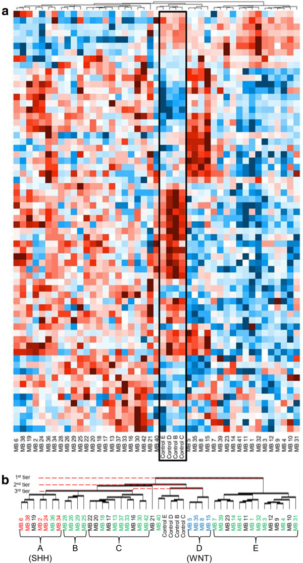 http://static-content.springer.com/image/art%3A10.1186%2F2051-5960-1-66/MediaObjects/40478_2013_Article_202_Fig1_HTML.jpg