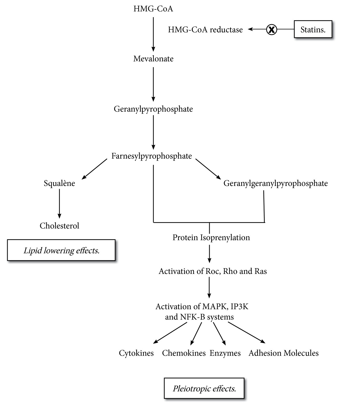 http://static-content.springer.com/image/art%3A10.1186%2F2110-5820-2-19/MediaObjects/13613_2012_Article_104_Fig1_HTML.jpg