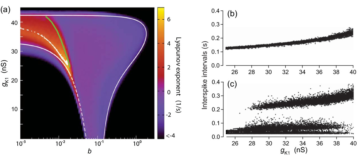 http://static-content.springer.com/image/art%3A10.1186%2F2190-8567-1-11/MediaObjects/13408_2011_Article_12_Fig8_HTML.jpg