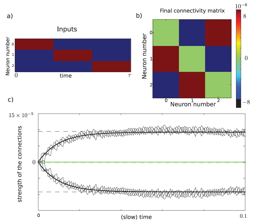 http://static-content.springer.com/image/art%3A10.1186%2F2190-8567-2-13/MediaObjects/13408_2012_Article_24_Fig7_HTML.jpg