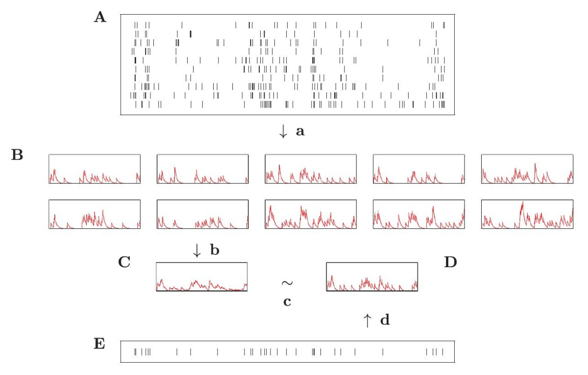 http://static-content.springer.com/image/art%3A10.1186%2F2190-8567-3-3/MediaObjects/13408_2012_Article_29_Fig1_HTML.jpg