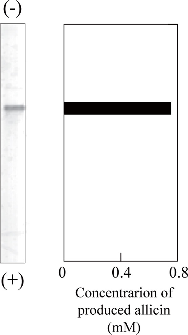 http://static-content.springer.com/image/art%3A10.1186%2F2191-0855-1-2/MediaObjects/13568_2011_2_Fig2_HTML.jpg