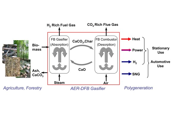 http://static-content.springer.com/image/art%3A10.1186%2F2192-0567-1-7/MediaObjects/13705_2011_7_Fig2_HTML.jpg