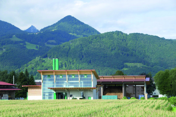 http://static-content.springer.com/image/art%3A10.1186%2F2192-0567-1-7/MediaObjects/13705_2011_7_Fig4_HTML.jpg