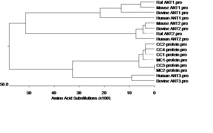 http://static-content.springer.com/image/art%3A10.1186%2F2193-1801-2-458/MediaObjects/40064_2013_Article_566_Fig4_HTML.jpg