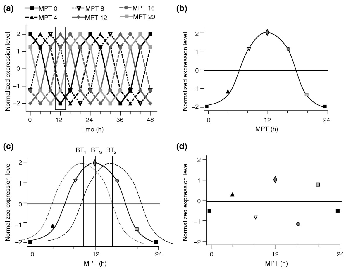 http://static-content.springer.com/image/art%3A10.1186%2Fgb-2004-5-11-246/MediaObjects/13059_2004_Article_761_Fig2_HTML.jpg