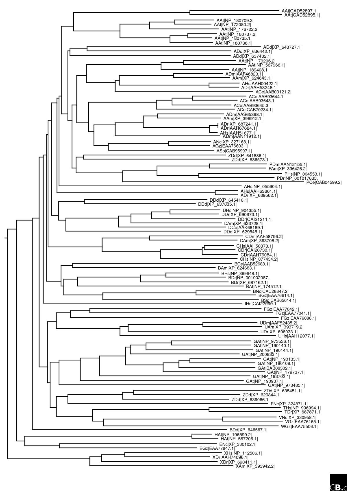 http://static-content.springer.com/image/art%3A10.1186%2Fgb-2007-8-3-209/MediaObjects/13059_2007_Article_1429_Fig2_HTML.jpg