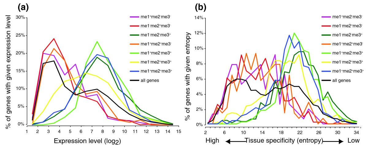 Computational modelling of gene regulation