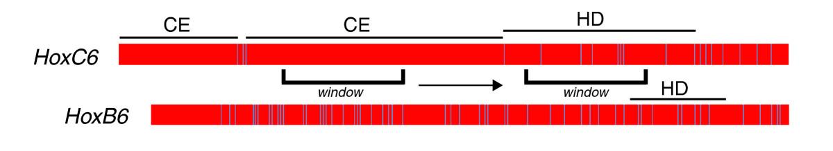 http://static-content.springer.com/image/art%3A10.1186%2Fjbiol116/MediaObjects/13061_2009_Article_151_Fig1_HTML.jpg