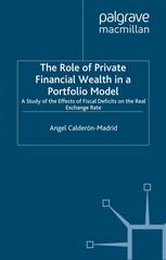 The Role of Private Financial Wealth in a Portfolio Model