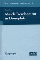 Muscle Development in Drosophila