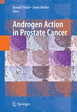 Androgen Action in Prostate Cancer