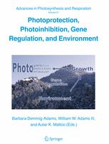 Photoprotection, Photoinhibition, Gene Regulation, and Environment