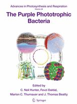 The Purple Phototrophic Bacteria