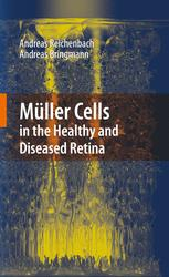 Müller Cells in the Healthy and Diseased Retina