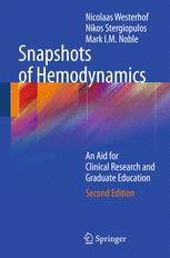 Snapshots of Hemodynamics