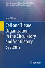 Cell and Tissue Organization in the Circulatory and Ventilatory Systems