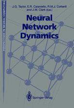 Neural Network Dynamics