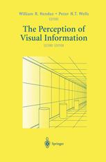 The Perception of Visual Information