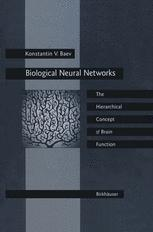 Biological Neural Networks: Hierarchical Concept of Brain Function