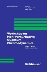 Workshop on Non-Perturbative Quantum Chromodynamics