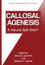 Callosal Agenesis