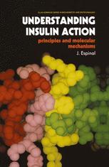 Understanding Insulin Action
