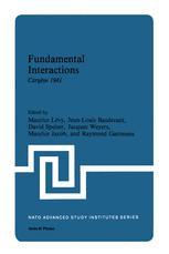 Fundamental Interactions