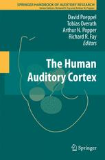 The Human Auditory Cortex